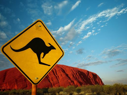 Canva Kangaroo Sign At Ayers Rock